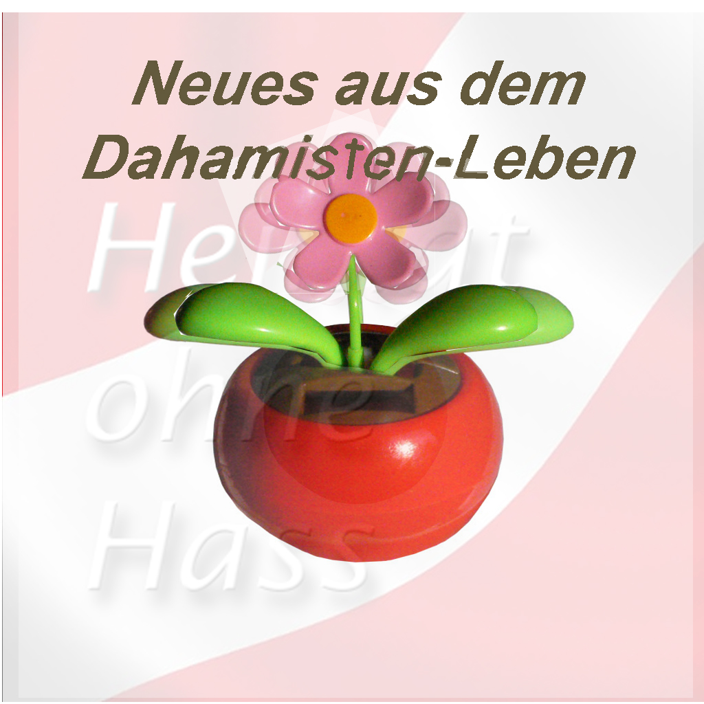 hoh-1024_1024-dahamisten-leben