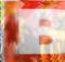 breitbart-idis-kopf-1024x636