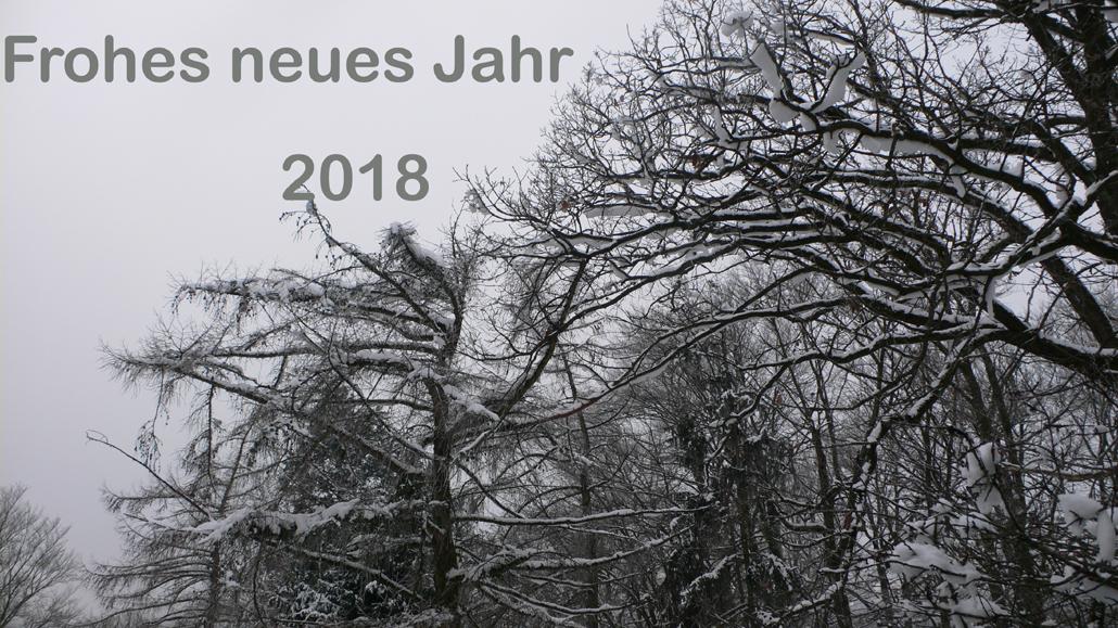 frohes-neues-jahr-2018-1030-540