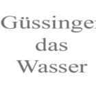 guessinger-1030