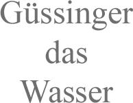 guessinger-2